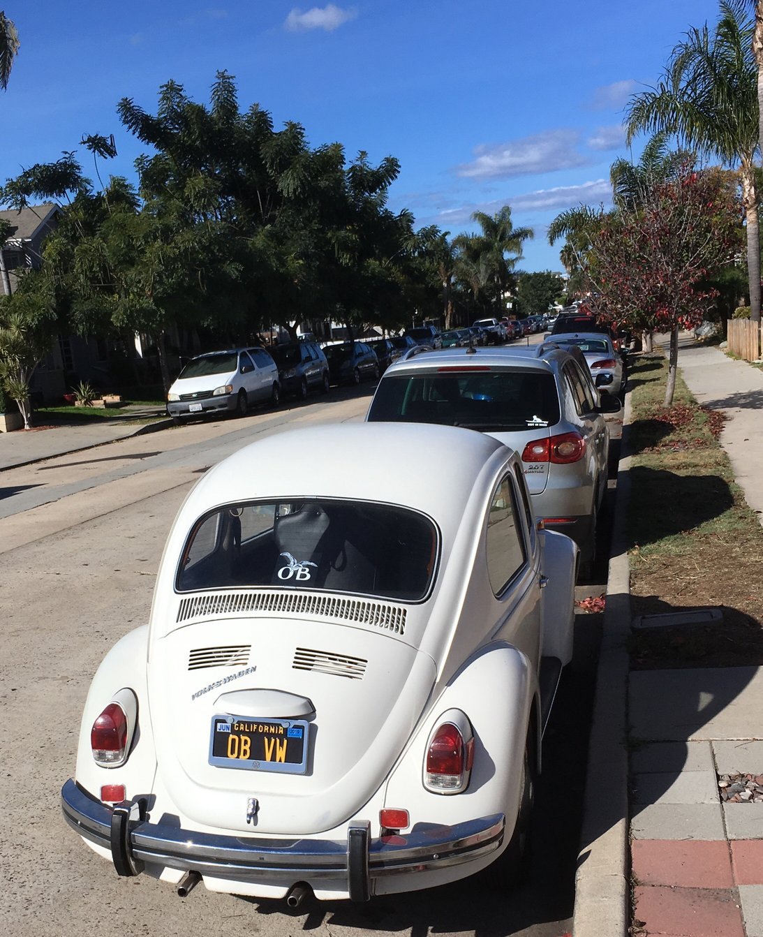 free photo of VW Bug in OB